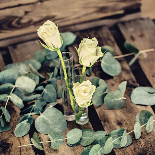 three flowers stems test tubes for hire for your wedding
