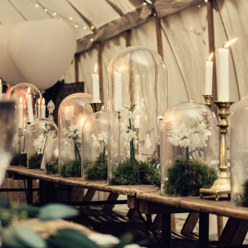 Vintage glass dome hire